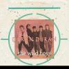 Duran DuranThe Wild Boys