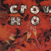 Crowded HouseWeather With You
