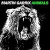Martin GarrixAnimals